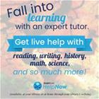 Fall into learning with an expert tutor